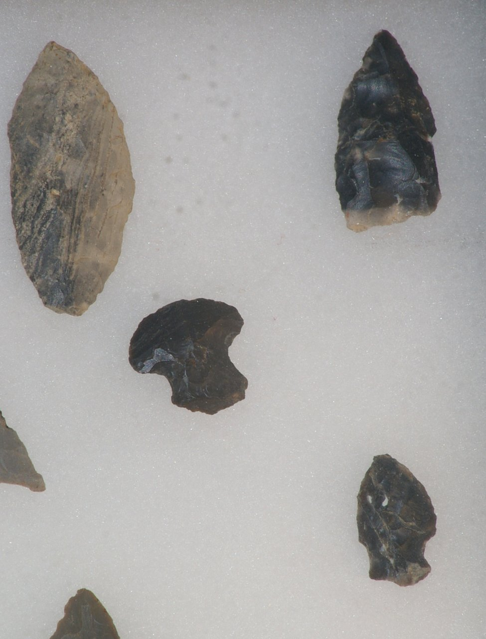 American Indian Artifacts with Arrowheads in Display Case
